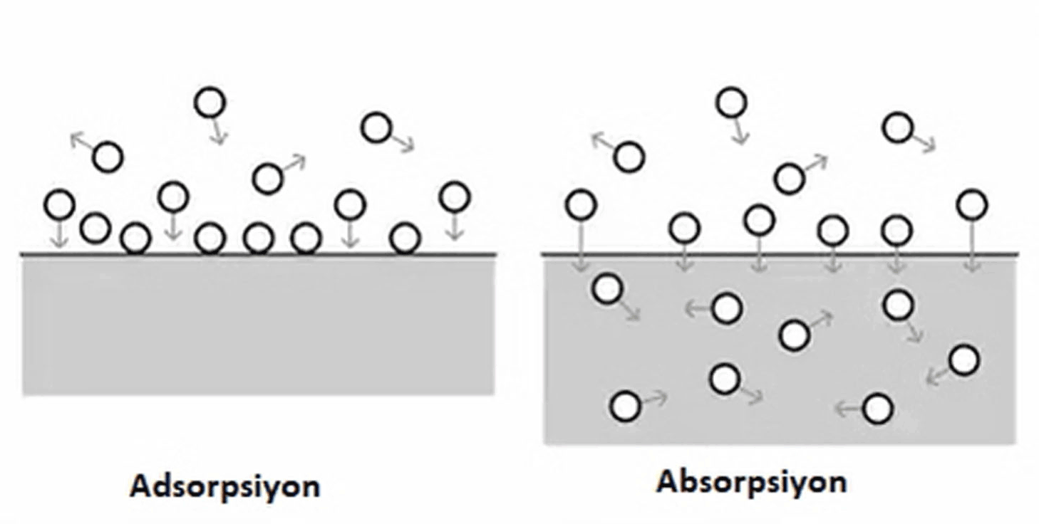 adsorpsiyon